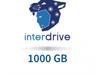 Interdrive 1000 GB